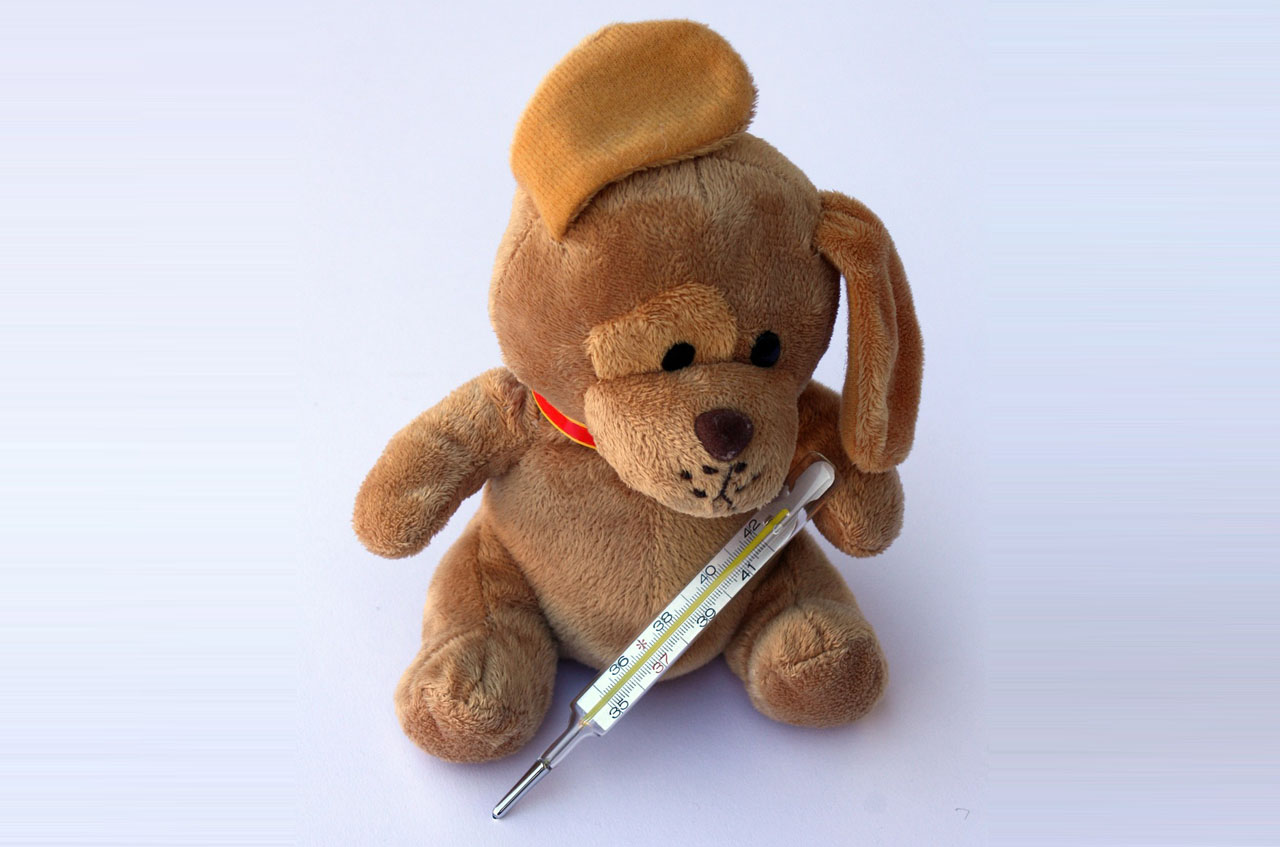 Teddy bear thermometer